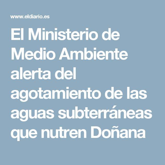 El Ministerio de Medio Ambiente alerta del agotamiento de las aguas subterráneas que nutren Doñana