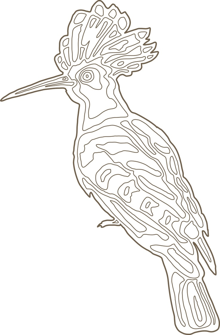 Our hoopoe (Wiedehopf) illustration that beautifully