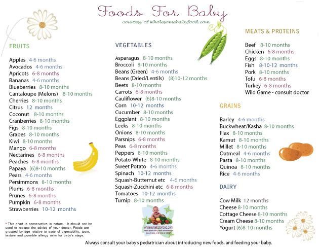 Solid Food Chart for Babies Grouped by Food Types. Printable.  When you can introduce what.