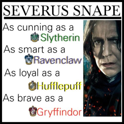 So, I have this headcannon. Snape was put in Slytherin because the Sorting Hat knew that he would need to be in Slytherin to get in good with the Dark Lord later on. If he hadn't been a Slytherin, the Dark Lord wouldn't have trusted him as much.