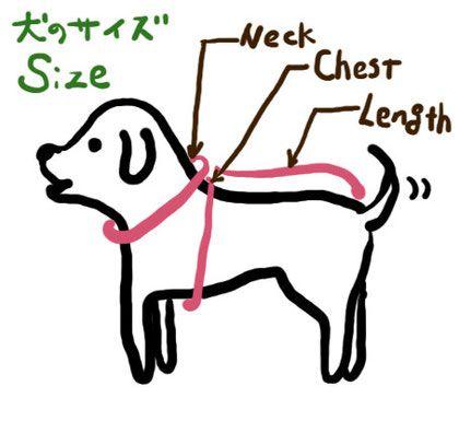 各部のサイズを測り、最適なサイズをお選びください。 犬種によって標準的なサイズがあり、明記していますが、 個体差もありますので測定することをお勧めします。 ダックスフント用編み図は只今準備中です。