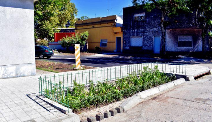 """¿Qué son y para qué sirven los """"Jardines de Lluvia"""" que construye el Municipio C? - Sociedad - Información - Últimas noticias de Uruguay y el Mundo actualizadas - Diario EL PAIS Uruguay"""