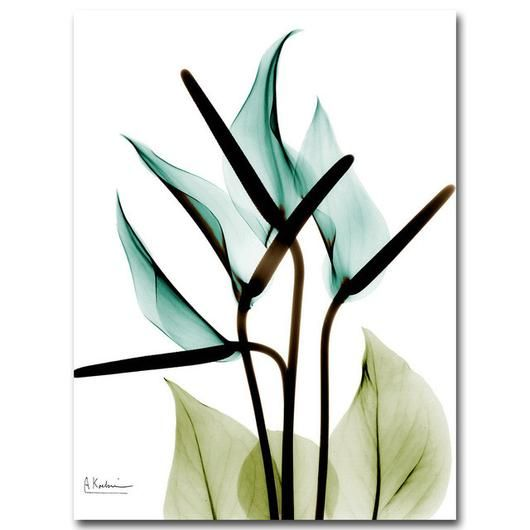nature inspired True Lily Canvas Prints, Beautiful, unique Wall Decor, Forest Ho…