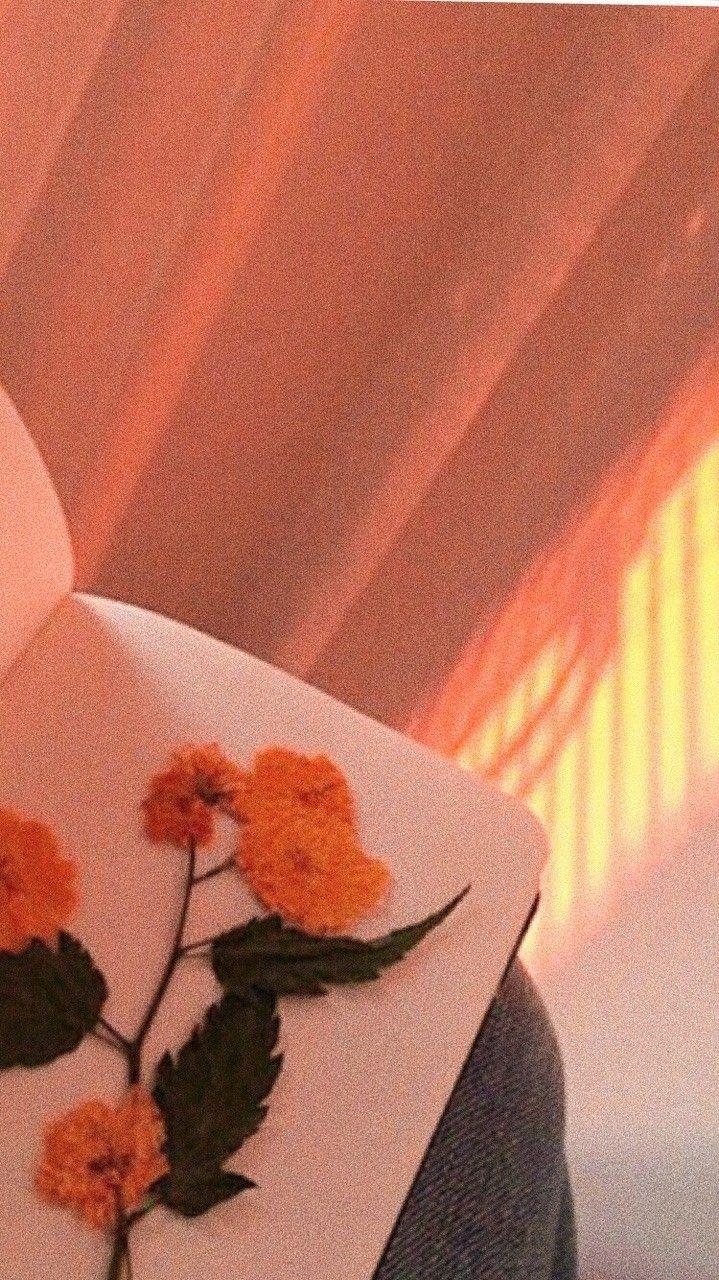Tum Moodboard Orange Orange Aesthetic Grunge Icons Twitter