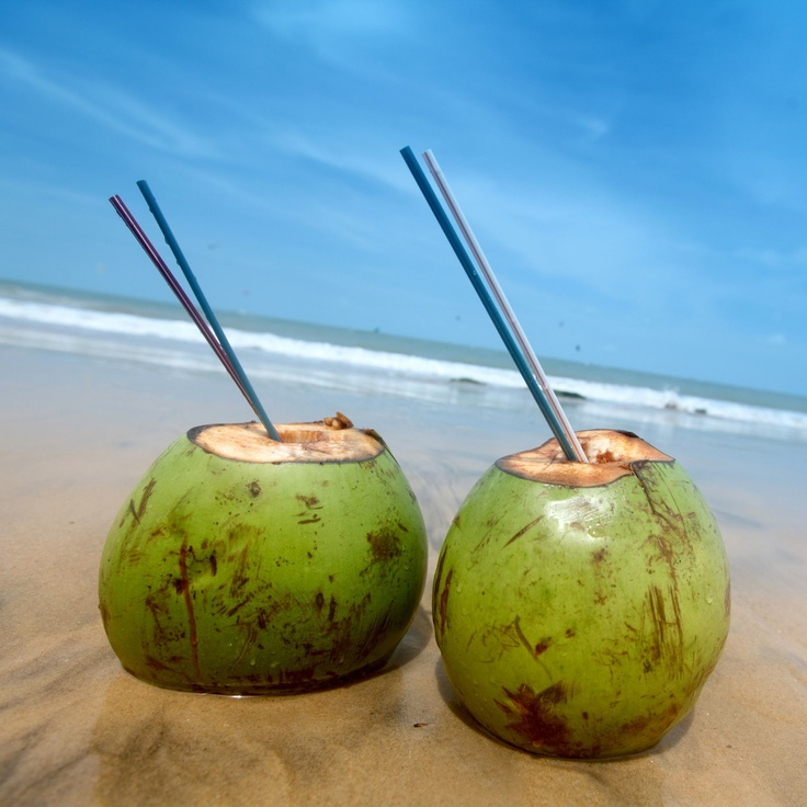 Drinking coconuts at our beach house