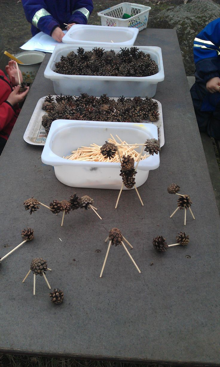 Pine cones provide sensory discoveries, of hearing (crackle), touch, sight (comparing sizes) and can also allow for creative play if turned into items, such as the little creatures with toothpicks, or used in paint rolling, or to make a mobile - many possibilities.