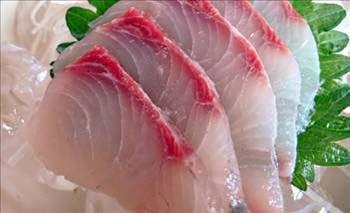 FUGU BALIĞI: Kâğıt kadar ince dilimler halinde satılan fugu balığında tetrodoksin adlı oldukça etkili  bir madde bulunuyor.
