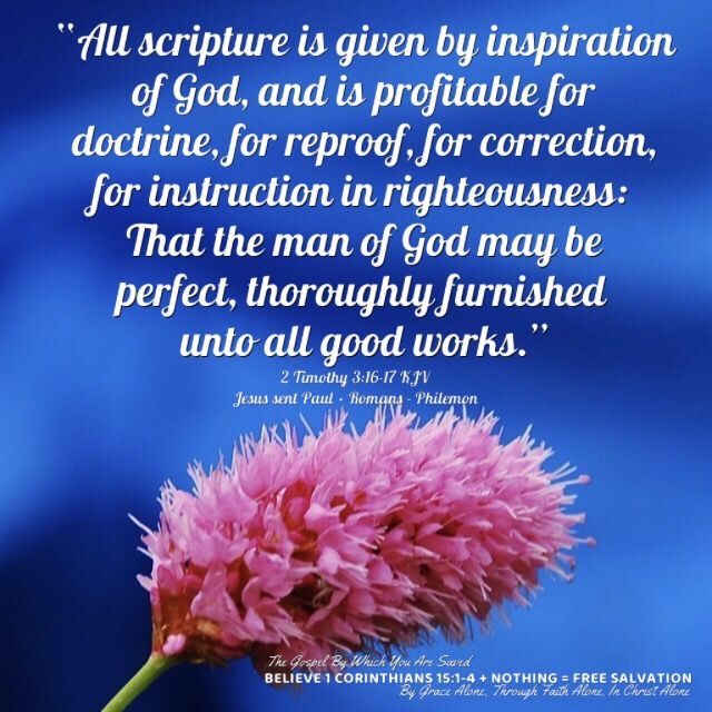 """""""All scripture is given by inspiration of God, and is profitable for doctrine, for reproof, for correction, for instruction in righteousness: That the man of God may be perfect, thoroughly furnished unto all good works.""""  2 Timothy 3:16-17 KJV ✞Grace and peace in Christ!"""
