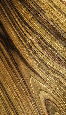 Incredible grain!!  Black Walnut Flitch