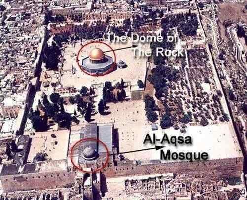 Umroh ini memang spesial karena kita mengunjungi 3 Masjid yang Menjadi Pusat Peradaban Islam, Masjidil Aqsho di Palestina, Masjid Nabawi dan juga Masjidil Haram. berbeda dengan program – program kami yang lain,