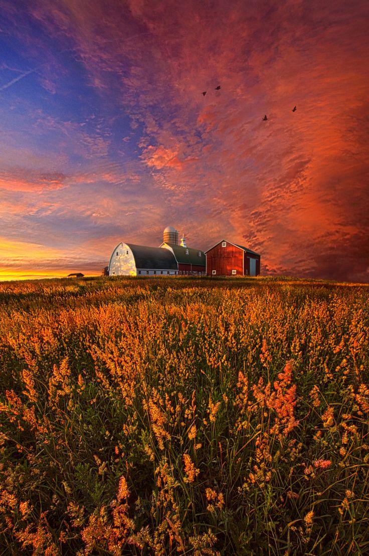 Patience Peaceful Barn Farm Landscape By Phil Koch