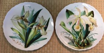 "Set of 6, antique cabinet plates each hand painted with a different orchid. The painting is exquisite in its vivid color and refined details. Orchids are a popular home decor accessory in Sarasota and these are always blooming! WB Daniels & Sons, London, maker's mark on backs. 8.75"" diameter. SOLD"
