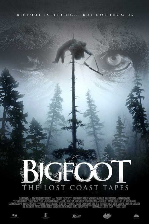 Big Foot: The Lost Coast Tapes 27x40 Movie Poster (2012)