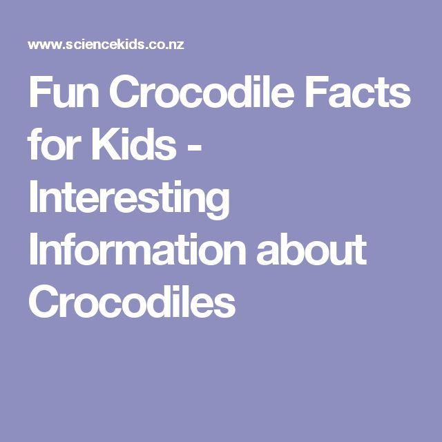 Fun Crocodile Facts for Kids - Interesting Information about Crocodiles