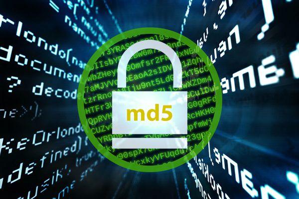 Generador de códigos Hash MD5