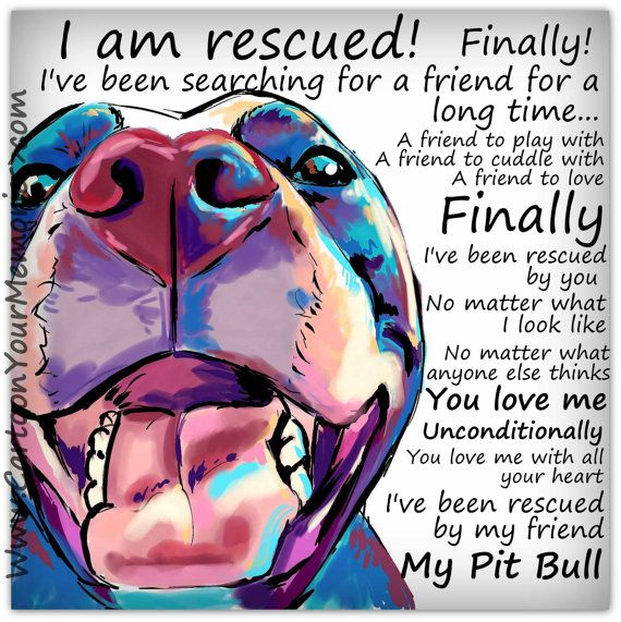 I am rescued Pitbull art sign by CartoonYourMemories on Etsy, $15.00