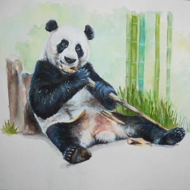 Vasiliki Dimtsiou  panda watercolor