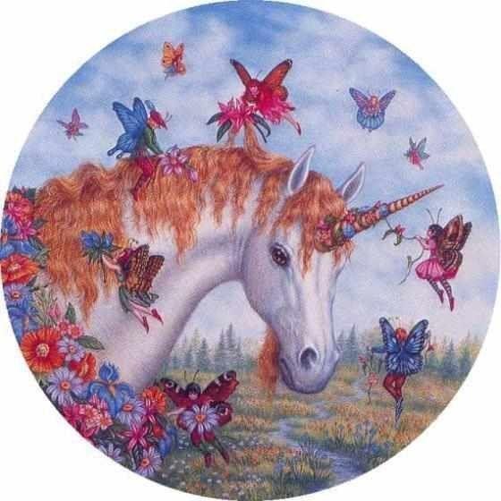 photos of unicorns and fairies - Google Search