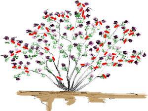 les 25 meilleures id es de la cat gorie rosiers grimpants sur pinterest fleurs d 39 escalade. Black Bedroom Furniture Sets. Home Design Ideas