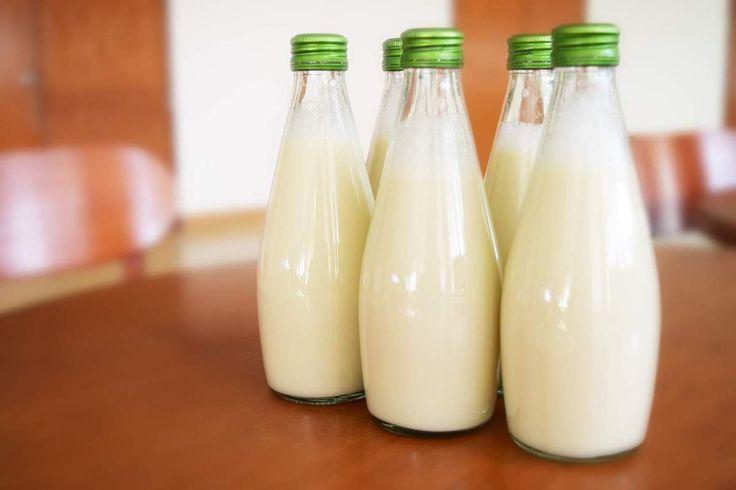 5 benefici del latte di Kefir e come prepararlo