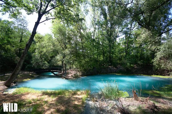 The turquoise waters of a beautiful river. Abruzzo, Italy