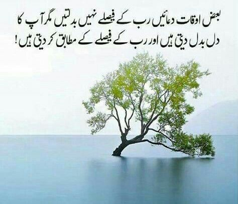 Waqi hi , aysaa hota hai kay samjdaar insan Allah ki Raza mai razi ho jata hai !!!!! A.H