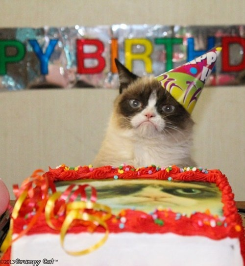 Happy Birthday, Grumpy Cat! Meh... Happy Birthday, Grumpy Cat Birthday, Birthday Parties, Sauces, Funny Pictures, Grumpy...