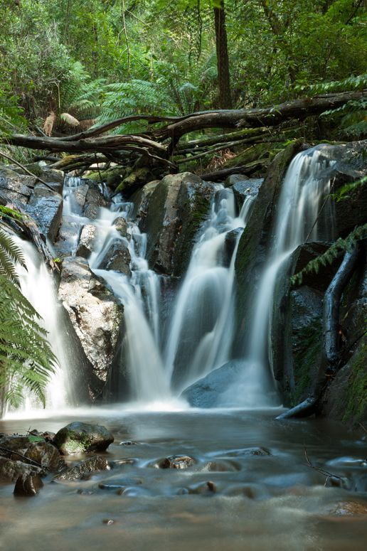 Dandenong Ranges Olinda Falls near Melbourne, Australia Visit us on http://chandlerdental.com.au/