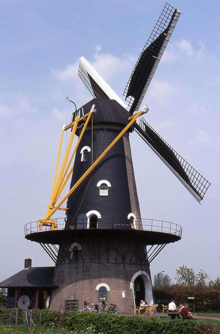 Oisterwijk (N-B) - Onvermoeid
