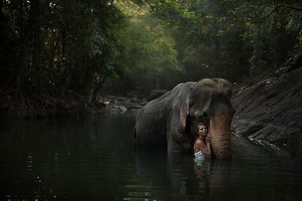 Sintonia entre pessoas e animais deixaram essas fotos bonitas e delicadas