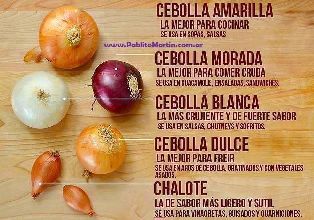 Tipos de cebolla y su uso