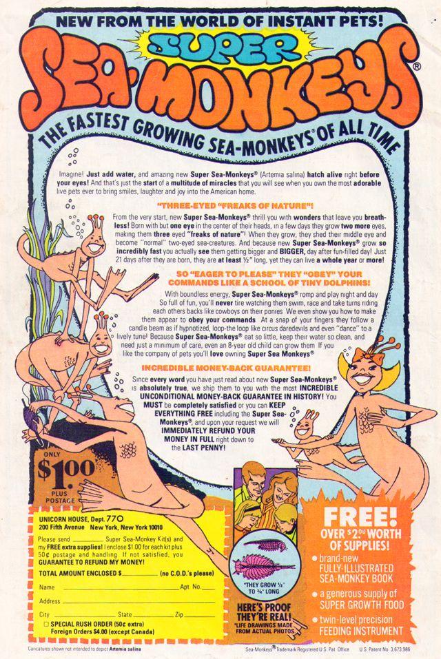 Old Stuff Sea Monkeys Sea Monkeys Sea Old Things