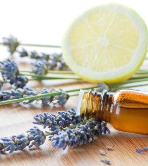 7 oli essenziali per combattere l'ansia e favorire la concentrazione (Ambiente…
