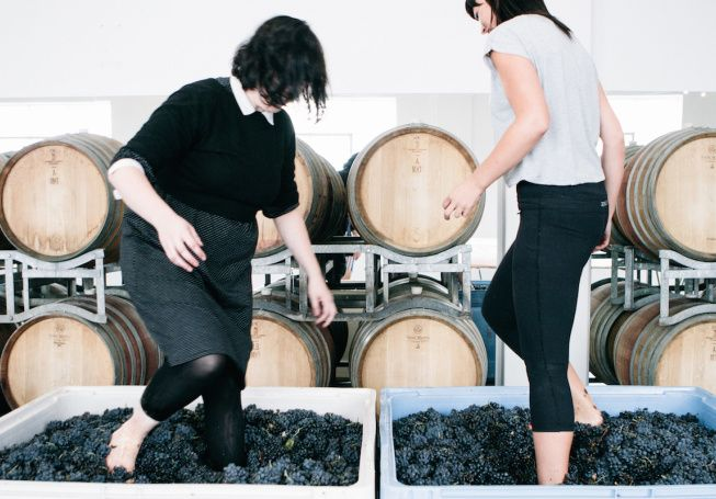 Try winemaking without leaving the city.