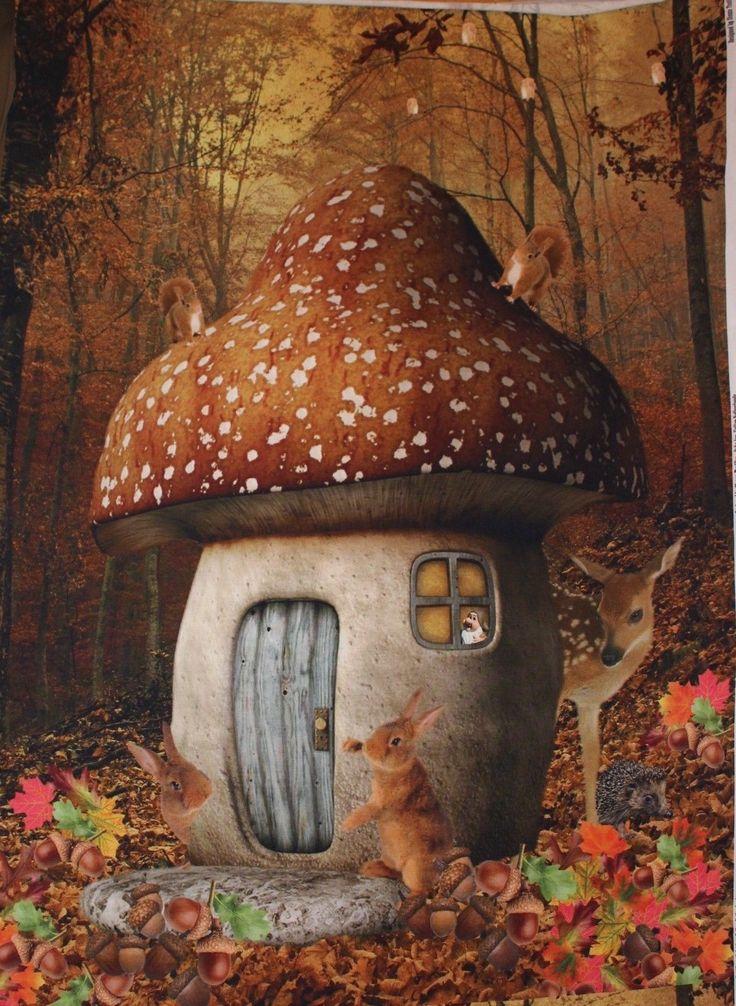 Stenzo Jersey Digitaldruck Eichhörnchen Pilz Panel Herbst braun Märchenwald in Bastel- & Künstlerbedarf, Stoffe   eBay!