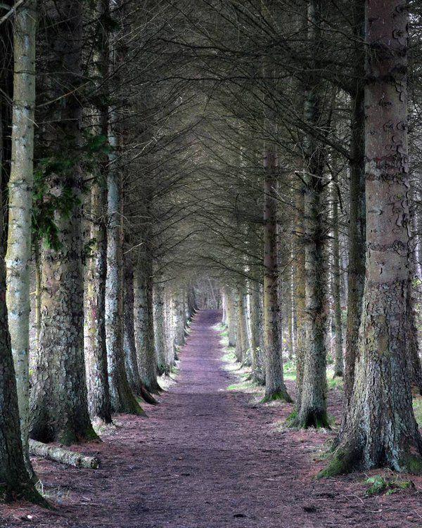 Beecraigs, Linlithgow, West Lothian, Scotland