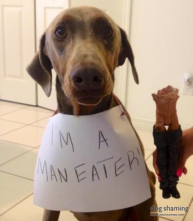 Man Eater!