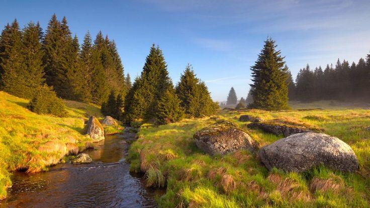 http://www.czechtourism.com/de/c/sumava-national-park/