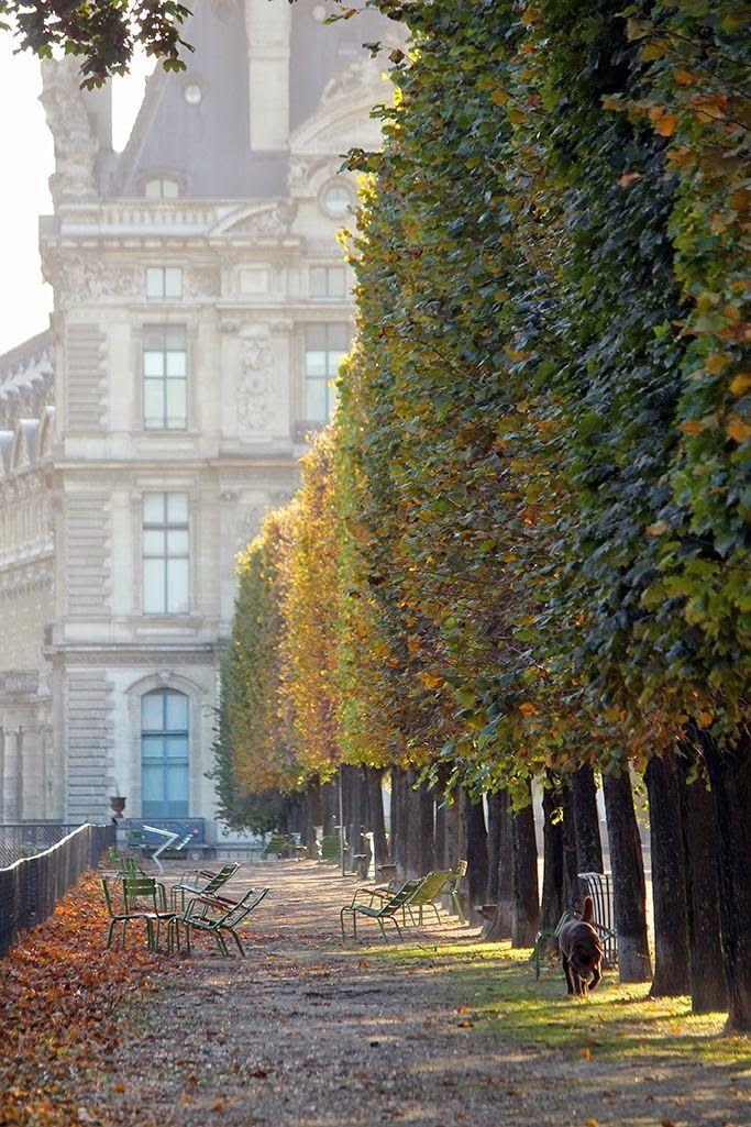 Jardins de Paris à l'automne. . .
