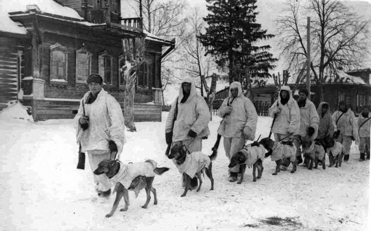 Soviet soldiers with explosives-laden Anti-Tank Dogs, Battle of Moscow, 1941