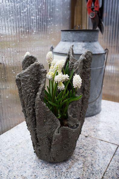 Spännande värre när jag vände rätt krukorna i betong, de är gjorda av en handduk som är blött i betong. Man tror nästan att de skall gå sönder, men de håller faktiskt. Jag lät den lilla plastkrukan...