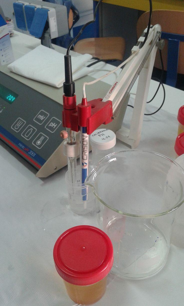 5. Introducir el electrodo en el calibrador pH 7, dejar que la temperatura se estabilice