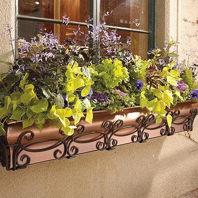 Kasten-Fenster-Pflanzer