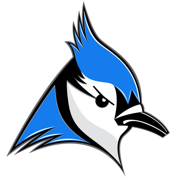Toronto Blue Jays Logo Redesign by Mark Lundberg