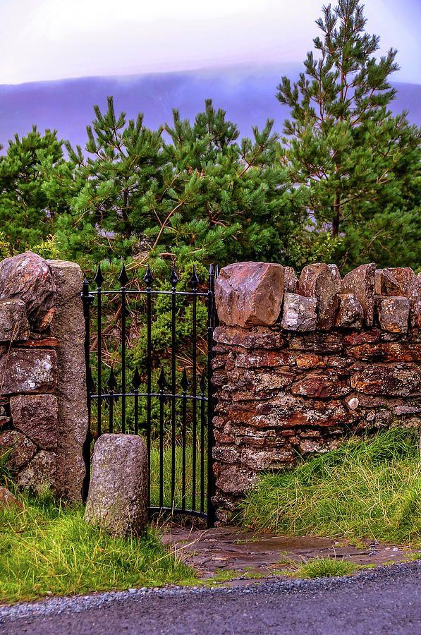 Secret Wicket 1. Wicklow. Ireland by Jenny Rainbow    #JennyRainbowFineArtPhotography #Ireland #Wicklow #HomeDecor #WallArt #Canvas