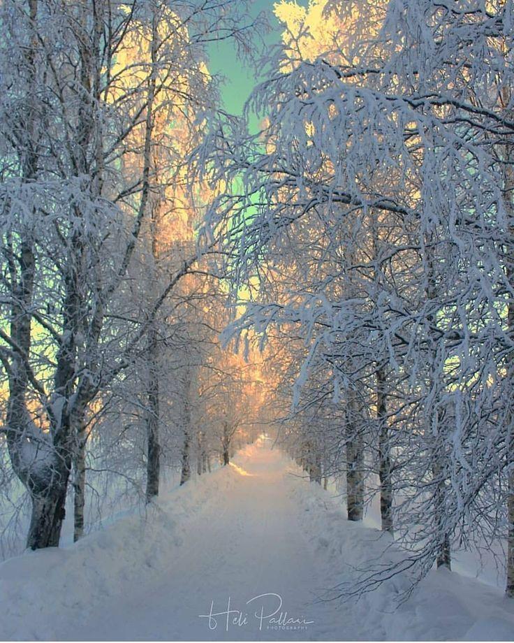 Winter photography – Lisa Eriksson