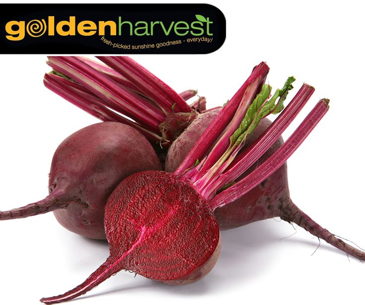 #WellnessWednesday: Beetroots are high in immune-boosting vitamin C, fiber and essential minerals like potassium, which is essential for healthy nerve and muscle function. Visit your nearest #GoldenHarvest store and stock up on this healthy vegetable.