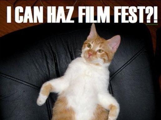 Cat Film Fest - first  Internet Cat Video Film Festival, 30th Aug 12