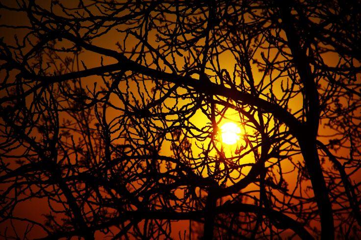 gün batımı/ters ışık