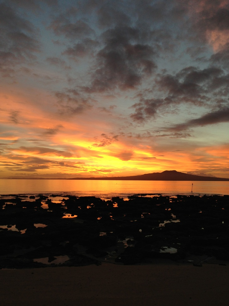 The end of my road, Rangitoto Island